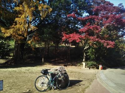 晩秋の三ッ池公園と獅子ヶ谷