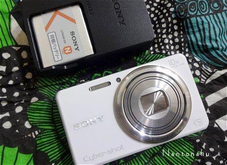 新しい方のカメラです