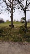 210412 伏古公園 (2)