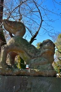 s-鷲宮神社DSC_1929_01
