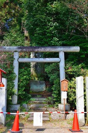 s-鷲宮神社DSC_1940_01
