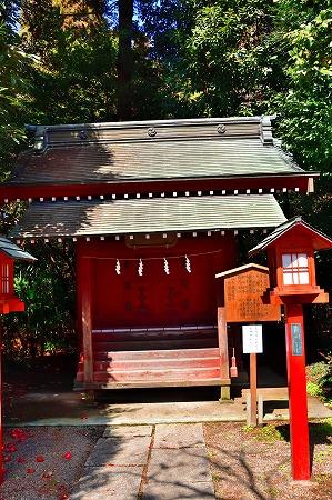 s-鷲宮神社DSC_1941_01
