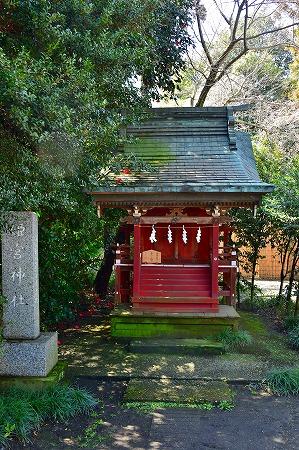 s-鷲宮神社DSC_1949_01