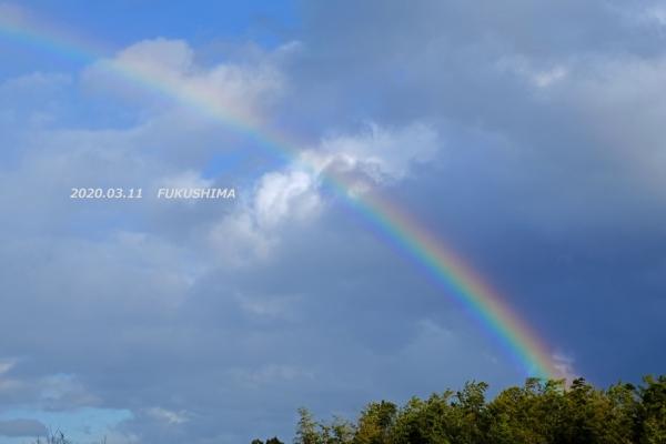 9年目の虹