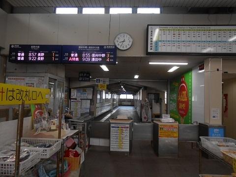ng-suzaka-1.jpg