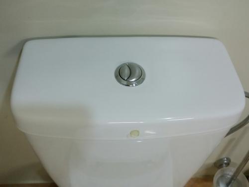 toilet11.jpg