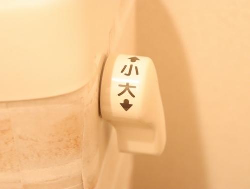toilet1.jpg
