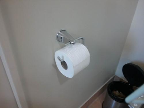 toilet7.jpg