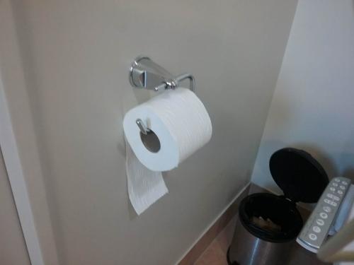 toilet8.jpg