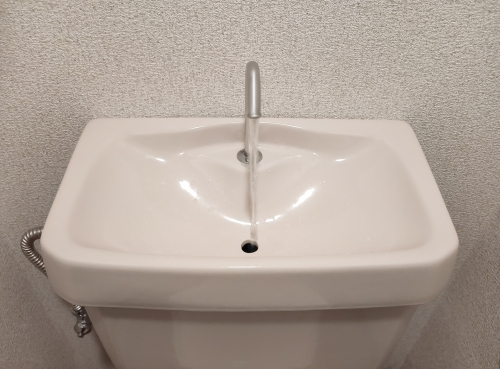 toilet9.jpg