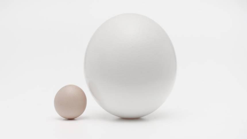 Big-small-eggs