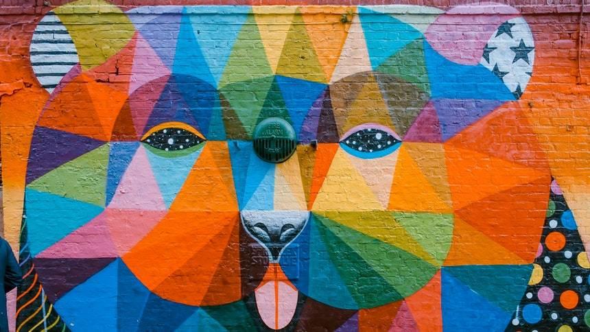 Colourful-bear