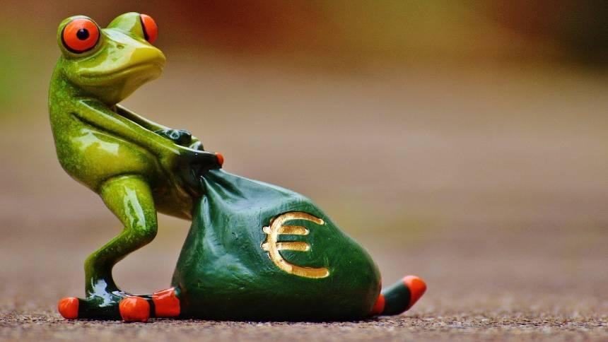 Money-frog