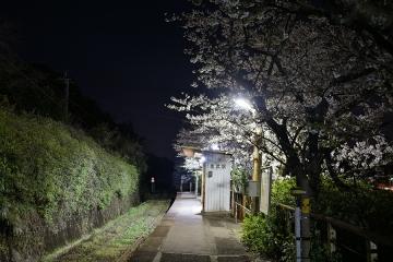 金武駅202103(5)