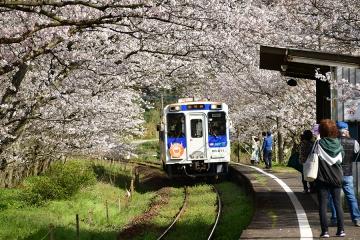 浦ノ崎駅202103(2)