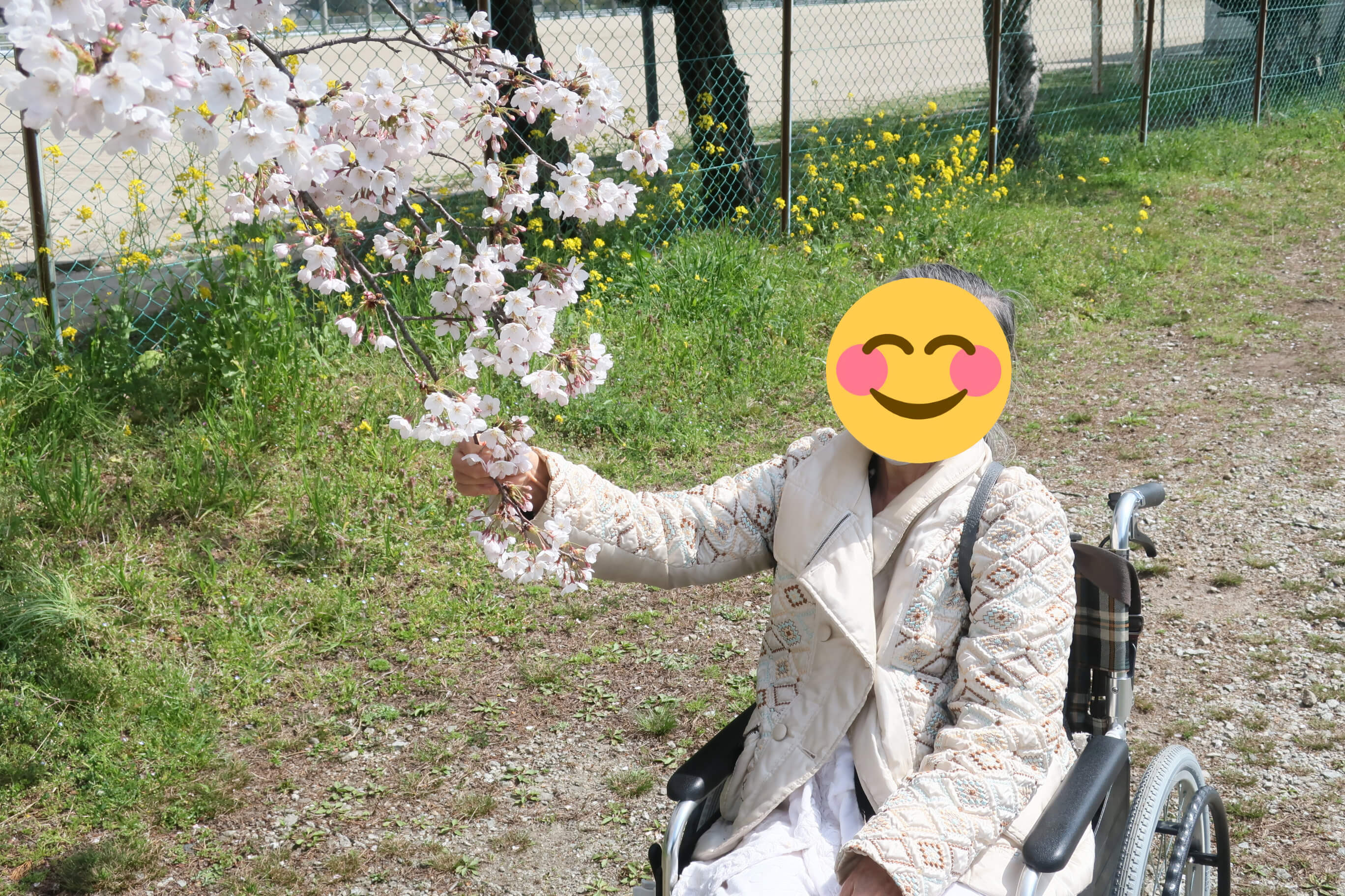 IMG_3871a.jpg