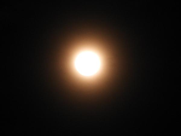 DSCN7824.jpg