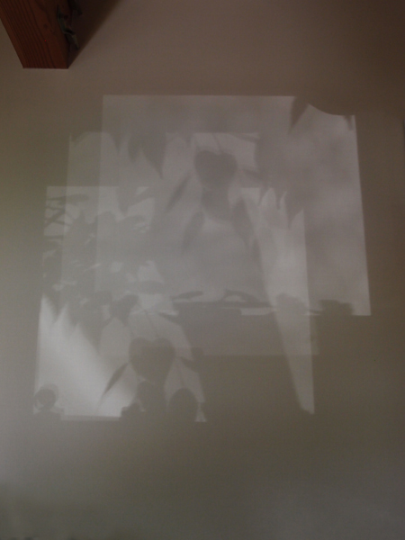 P7182006.jpg