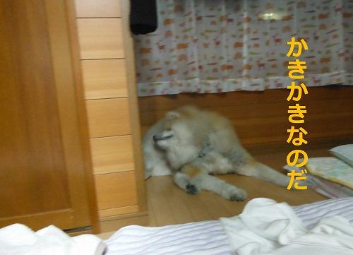 s-201107-2.jpg
