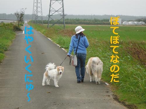 s-201128-5.jpg