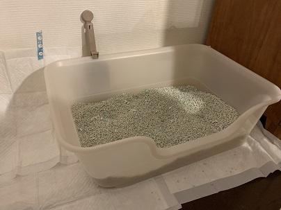 20201130-トイレ