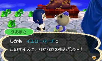 「わちーふぃる村」一月十八日11