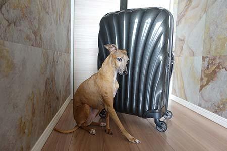スーツケース3