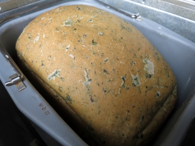 210428-42=ヨモギ食パン焼き上がりinパンケース aPBR