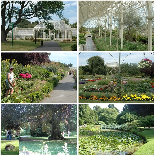 ダブリンの植物園