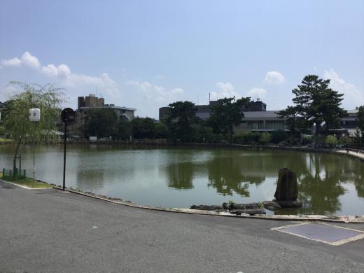 190817奈良猿沢池