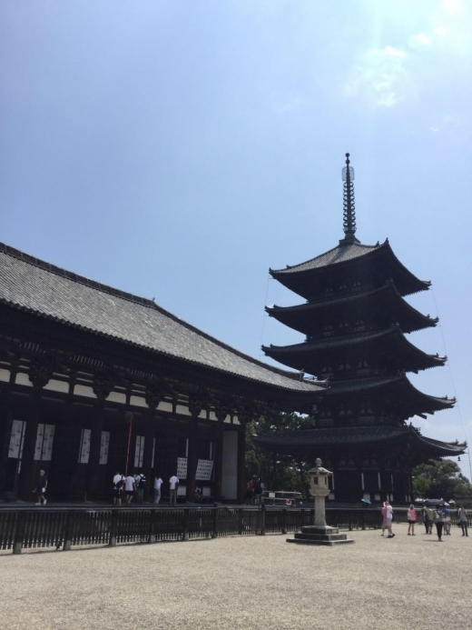 190817奈良興福寺五重塔東金堂