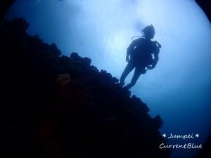 印西ダイビングスクール,白井ダイビングライセンス,千葉ニュータウンダイビング,雲見,水中洞窟,3Hケーブ (3)