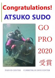 padi表彰2020