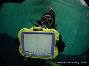 ダイビング器材の使い方,ドライスーツの使い方練習 (19)