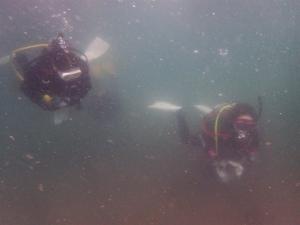 210516熱海ダイビング (7)