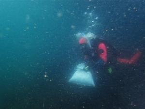 210516熱海ダイビング (26)