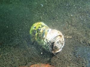 210516熱海ダイビング (29)