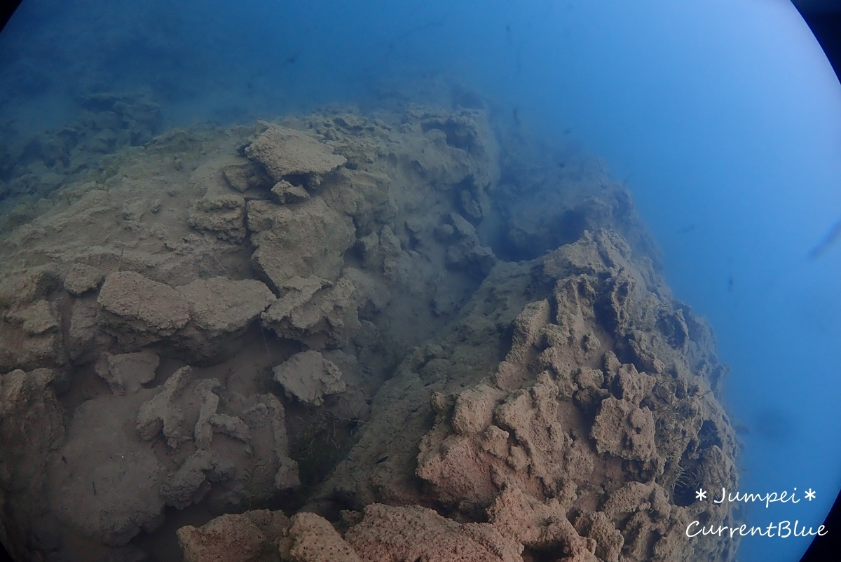 本栖湖溶岩ダイブ (2)