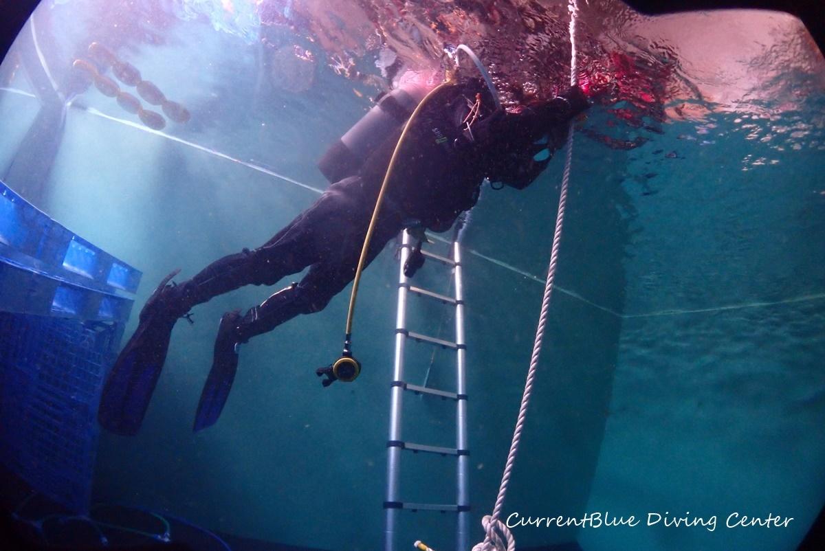 ダイビングライセンス取得コースプール実習千葉 (3)