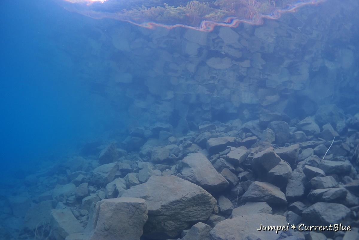 2本栖湖ダイビング (10)
