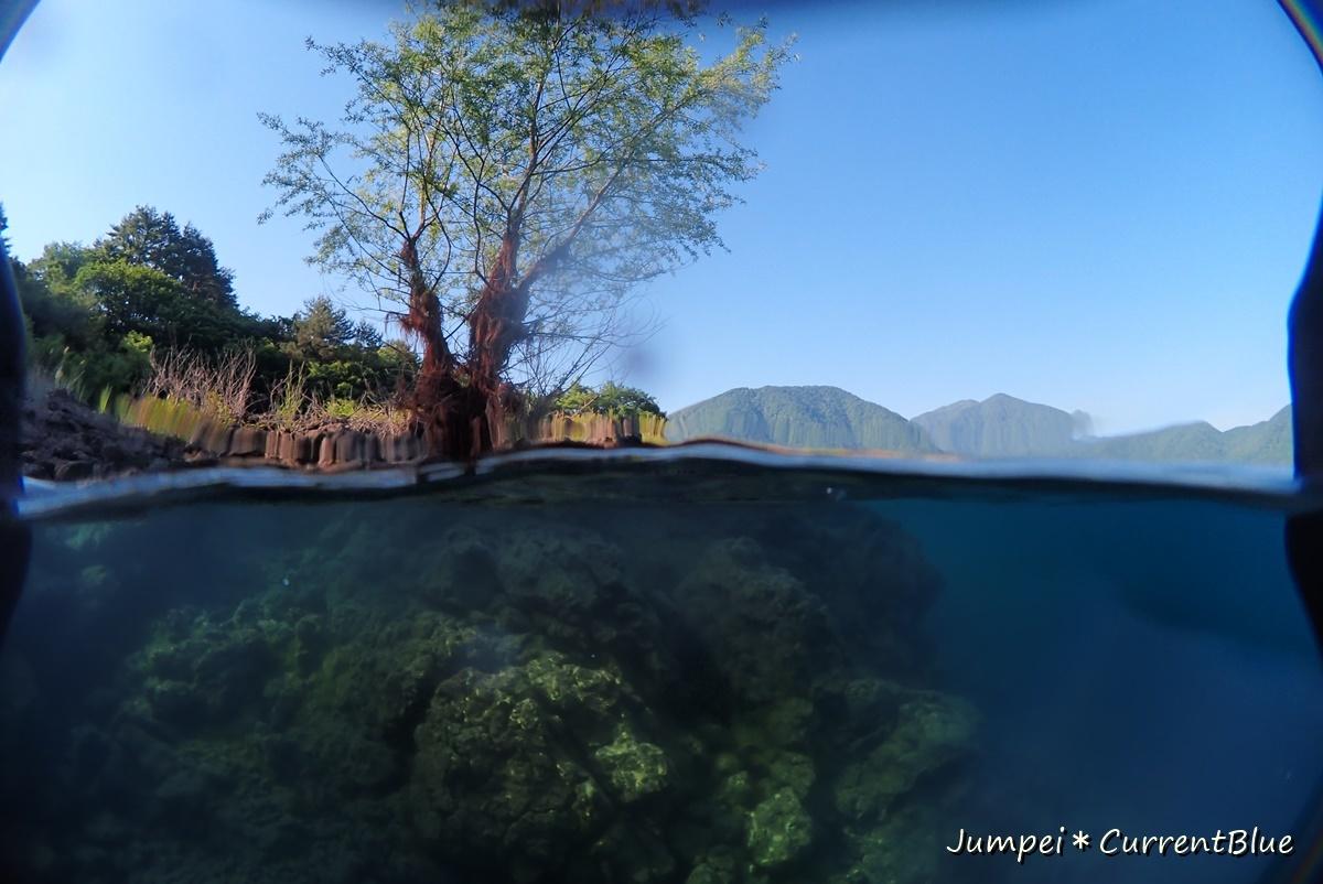 2本栖湖ダイビング (24)