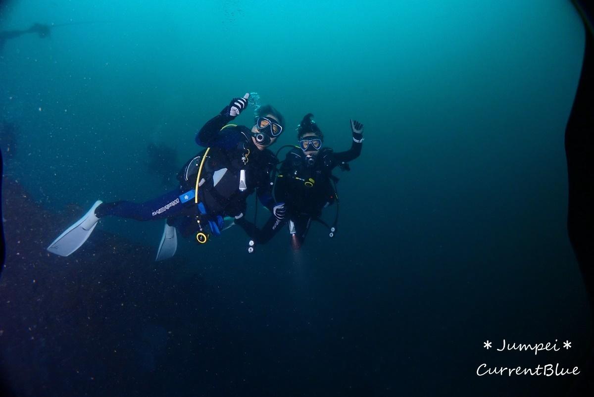 熱海ダイビングおすすめソフトコーラル美しいサクラダイ (24)