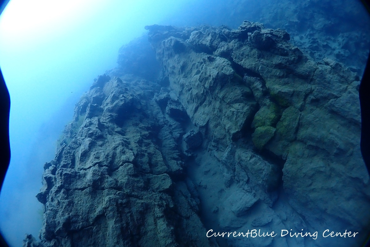 4本栖湖溶岩ダイビング,溶岩流ポイント,本栖湖ダイビング (17)