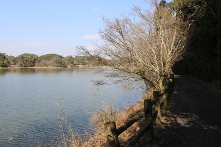 諏訪の池(6)