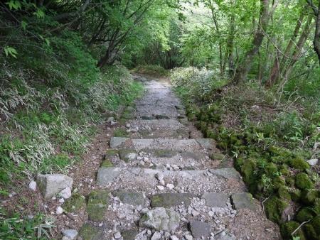 登山道(6)
