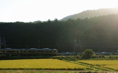 200929朝 (10)