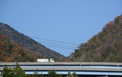 201117稲木 (8)