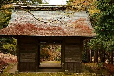 201126神池寺 (13)
