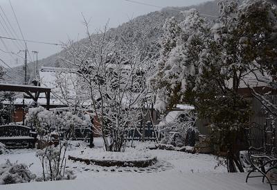 201231大晦日雪 (1)