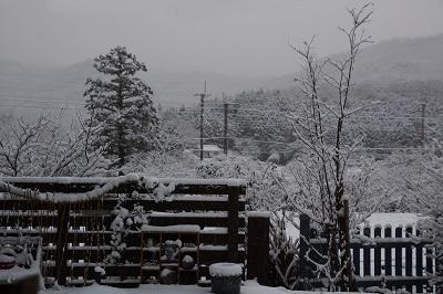 201231大晦日雪 (2)